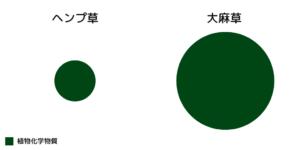 ヘンプと大麻草に含まれる植物化学物質の総量の違い
